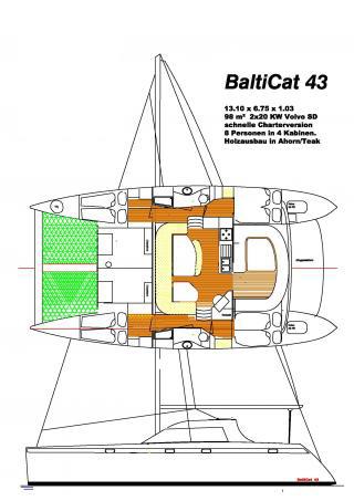 BaltiCat 43